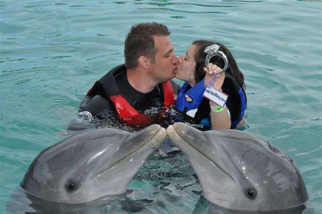 A very special engagement at Dolphin Encounters (photo credit to David Beckstead).